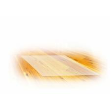Apsauginis kilimėlis po kėde skaidrus 100x125 cm