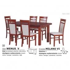 Stalo ir kėdžių komplektas 30